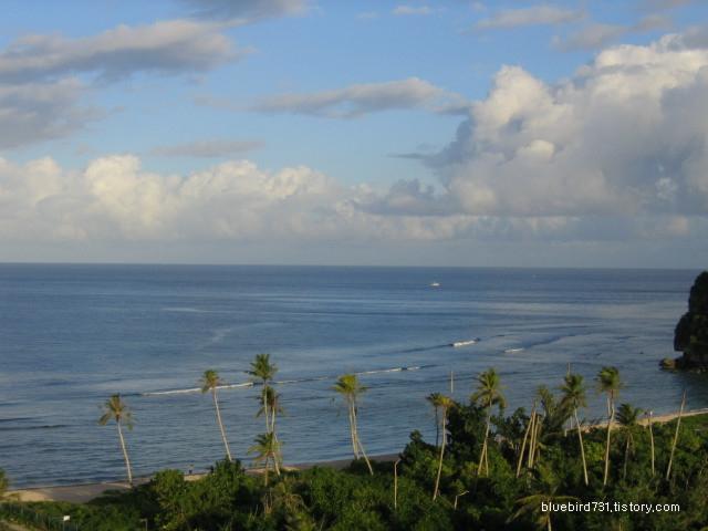 열대지방의 꽃, 태평양의 다이아몬드 괌