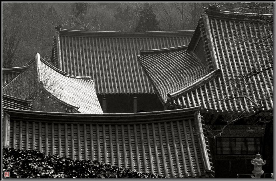 다솔사의 지붕