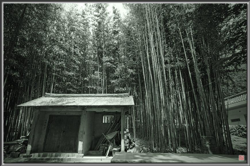대나무밭과 헛간