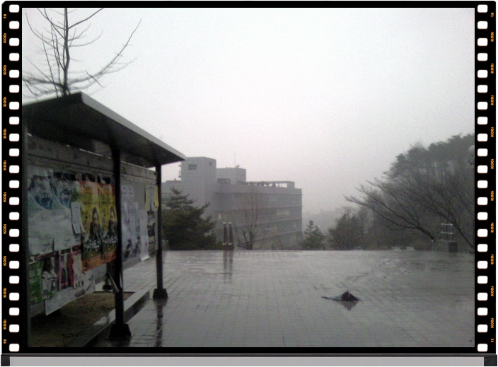 비가 오는 날 301동 앞...